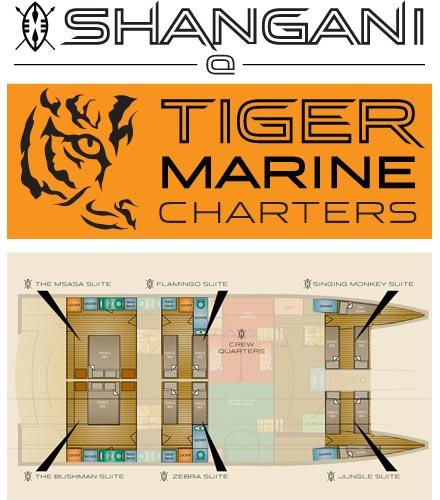 tiger-marine-finflix-web-design-phuket-3