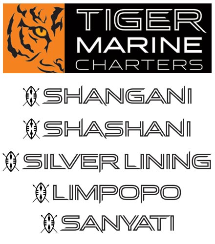 yacht charter web design phuket logo design finflix tiger marine charter